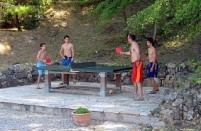 All weather table tennis